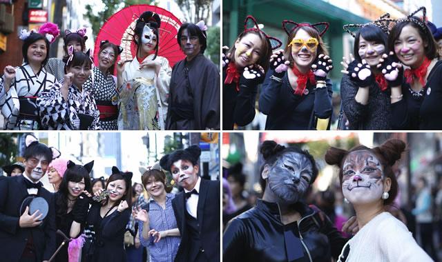 神楽坂化け猫フェスティバルの画像
